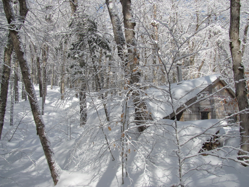 Chalet buried, winter 2011