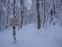 switchback sign Jan 17 011.jpg